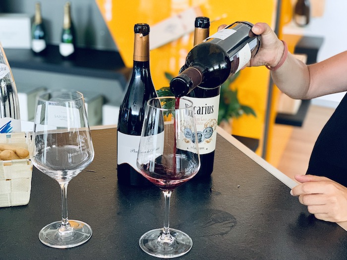 Wine tasting at Cantina Mori colli Zugna in Trentino