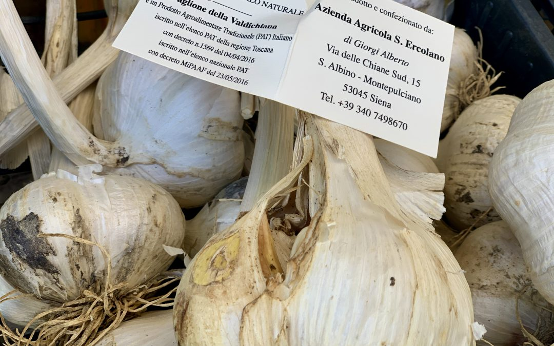"Aglione ""garlic"" from the Valdichiana"